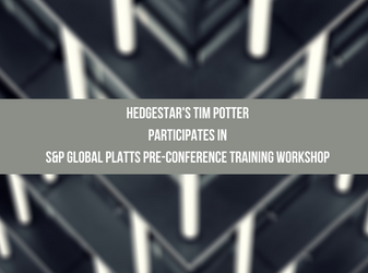 HedgeStar's Tim Potter participates in S&P Global Platts pre-conference training workshop