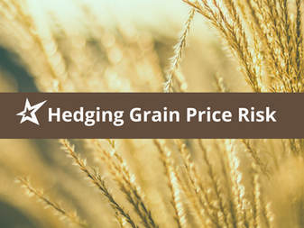 Hedging Grain Price Risk