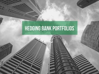 Hedging Bank Portfolios: Framing the Issue