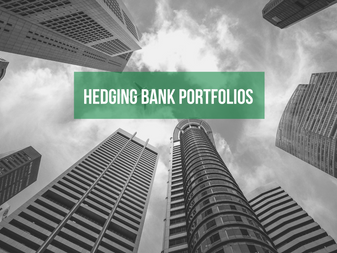 Hedging Bank Portfolios: Framing the Issue