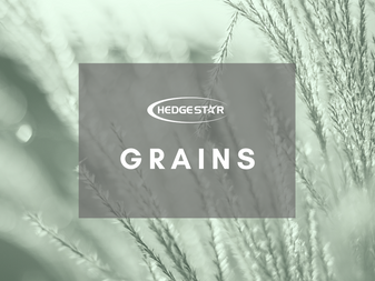 Grains Community - We're here for you!