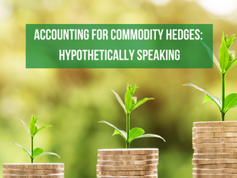 Accounting for Commodity Hedges: Hypothetically Speaking