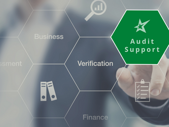 Audit Support – Valuation Services