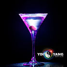 Yin-Yang-Night-Club-Promo-Photo.jpg