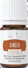 Ginger_InPixio_InPixio.png