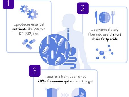 Gut Health - Introduction to the Microbiome