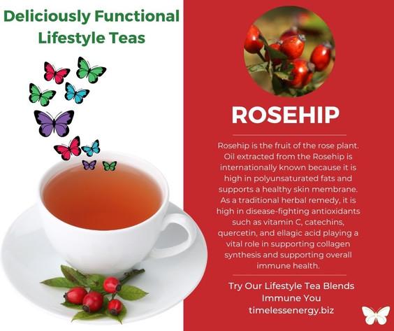 Rosehip Fruit.jpg