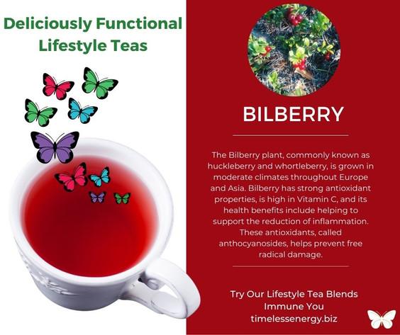 Bilberry Leaf.jpg
