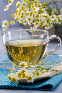 """When you hear the word """"chamomile,"""" what comes to mind?"""