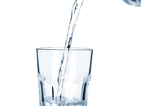 Essential Nutrient:  Water