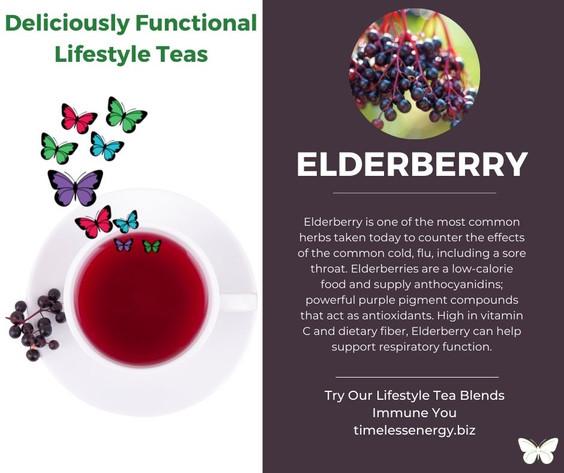 Elder Berry.jpg