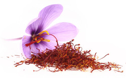 Spices and Herbs - saffron