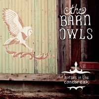 The Barn Owls: Horses in the Canebreak
