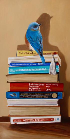 The Bird Guide