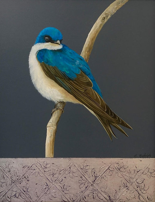 Tree Swallow by Barbara Rudolph