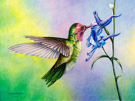 Mountain Trails Gallery Welcomes the Curious Nature of Birds of a Feather & Friends