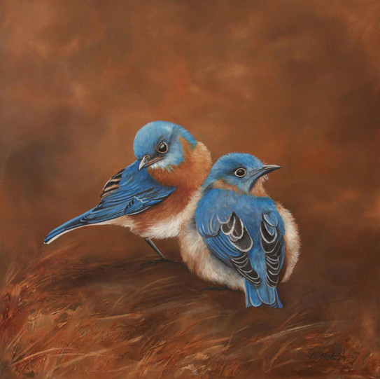 Little Bluebirds