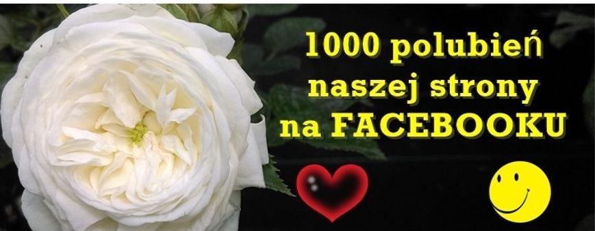 1000%2520fb_edited_edited.jpg