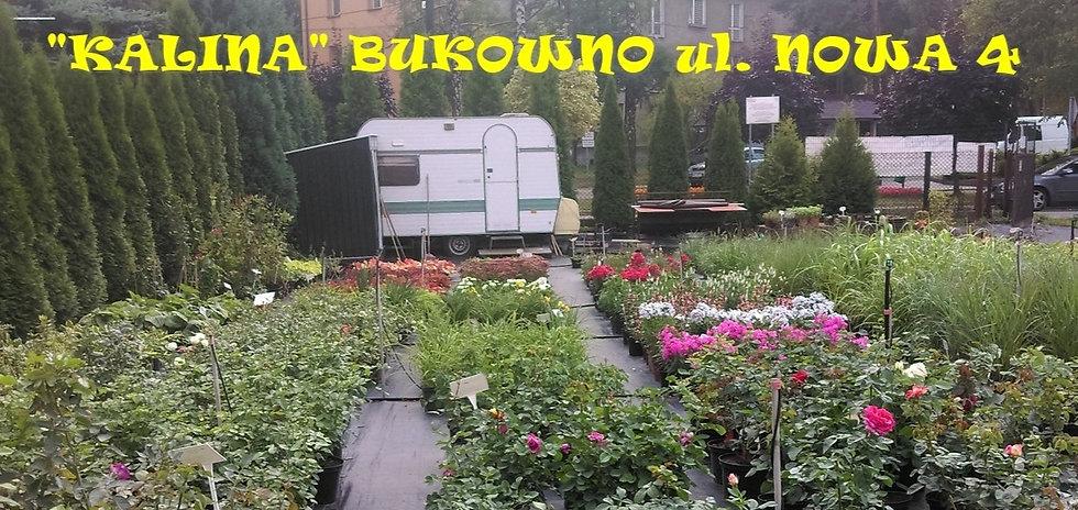 bukowno1_edited_edited.jpg