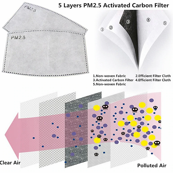5 Layers PM2.5 Activated Carbon Filter