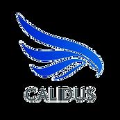 calidus_edited.png