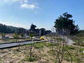 NaturPort Villaları Santiye 3.jpg