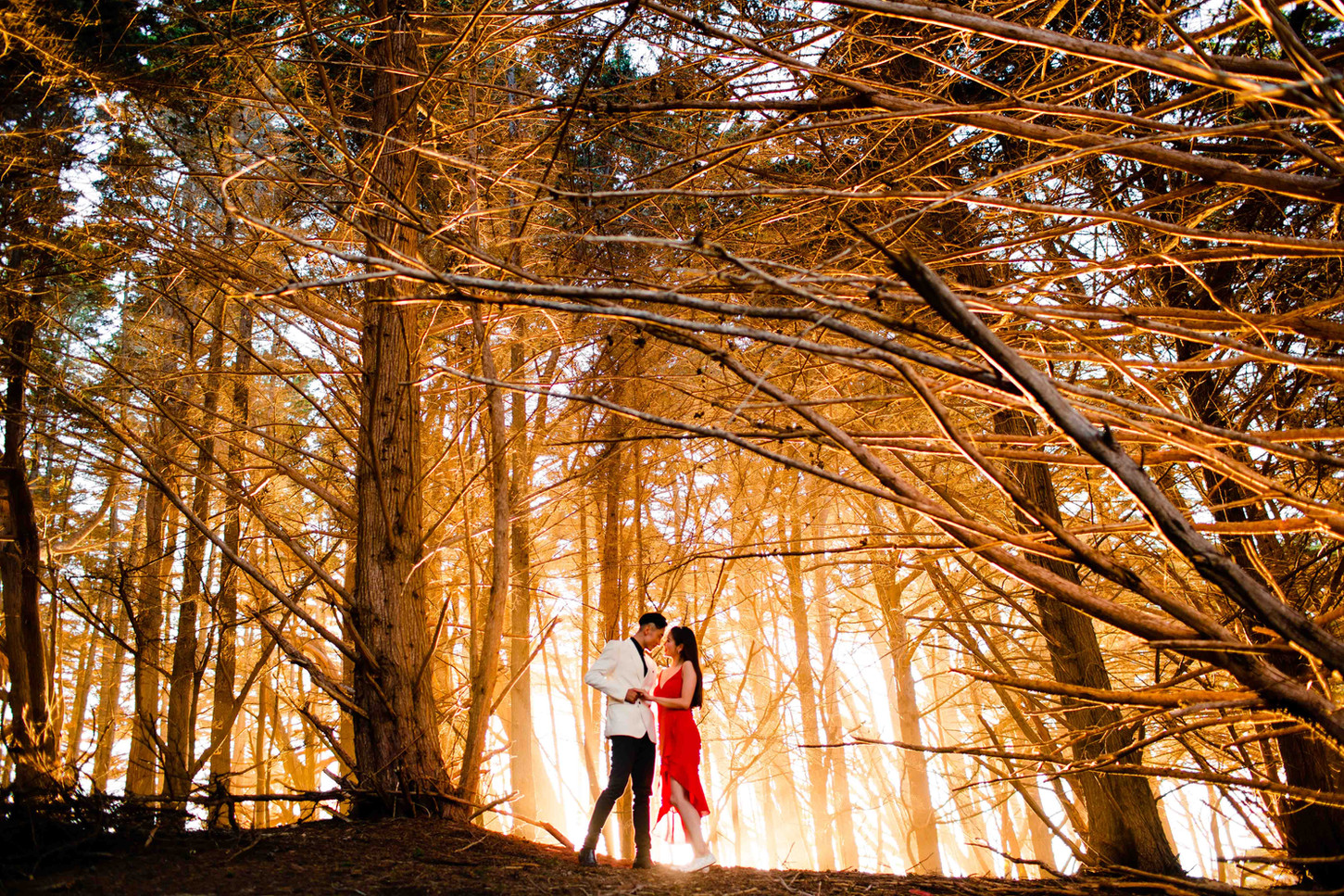 San Francisco engagement photographer  Bay Area engagement photographer