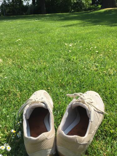 Lassen Sie uns die Schuhe ausziehen und Barfuss ihren Garten erkunden