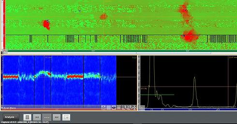 JASA 12inch scann_edited.jpg