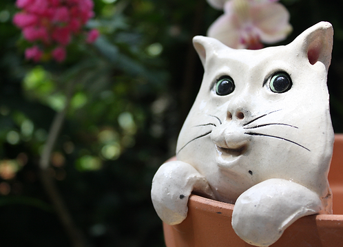 Pot Watcher Cat - White