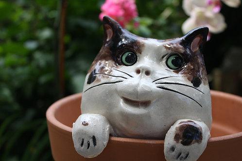 Pot Watcher Cat - Brown