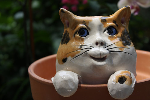 Pot Watcher Cat - Calico