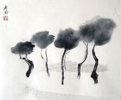 Italian Pines