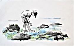 Rockpoooling
