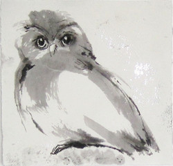 Shelley's Owl