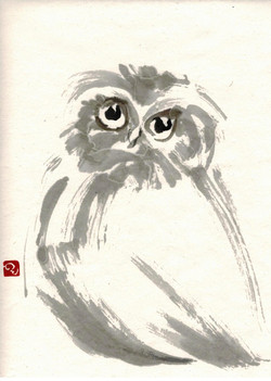 Pat's Owl