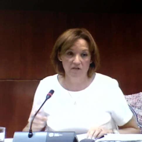 Consejera Agricultura Junta Andalucia - Carmen Ortiz - Comparecencia Parlamentaria 13/10/2016 a Petición G. Pº Podemos - Promovida por ADSG Sierra Oriental Huelva - 400 firmas.
