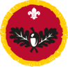 Beaver badge.png