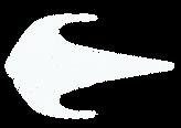 Bluwave-Logo-White.png