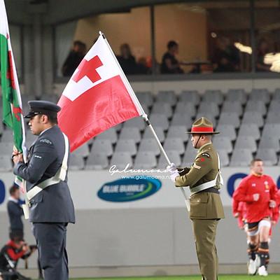 Tonga vs Wales