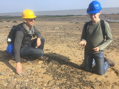 Fossil hunting in Essex
