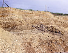 Long Hanborough Pit
