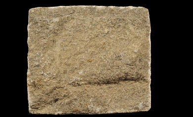 White Limestone - image courtesy of the British Geological Survey)