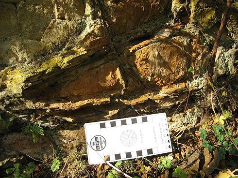 Northampton Sand Formation.jpg