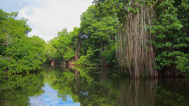 209734-Chacahua-Lagoon-National-Park.jpg