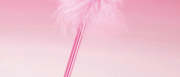 Ballet Shoes Pen.