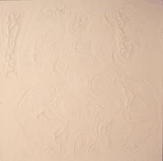 İsimsiz, 1994-95 Branda üzerine model hamuru ve akrilik 140 x 140 cm