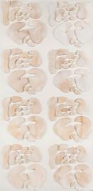 İsimsiz, 2010 Şasiye gerilmiş kumaş ve parşömen 200 x 100 cm