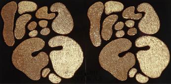 İsimsiz, 2009 Şasiye gerilmiş kumaş 100 x 200 cm