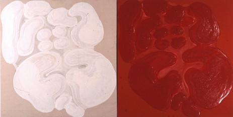 İsimsiz, 1992 Tuval üzerine model hamuru ve akrilik Diptik Her biri 100 x 100 cm